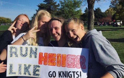 Cross country athletes endure state to finish season