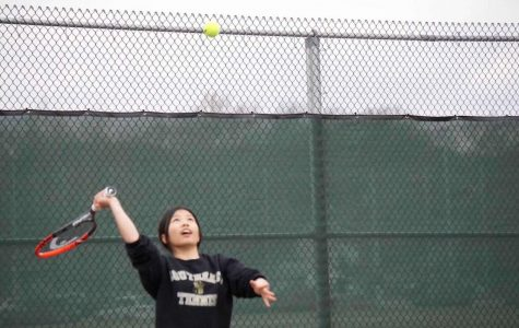 LSE Tennis: Everyone is welcome