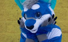 Furries of LSE: Inside the world of self-identified animals