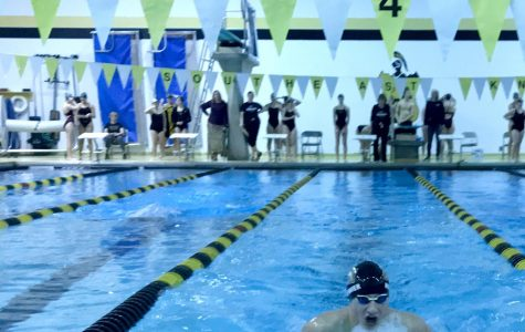 Southeast Swim sinks to Norfolk team